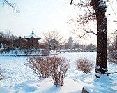 temple, landscape, snowscape, winter, snow, tree, nature