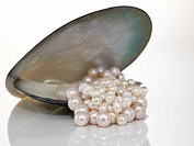 Pearl necklet and shell