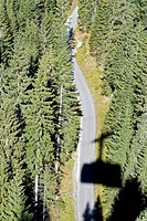 Germany, Bavaria, Coniferous forest along highway, aerial view