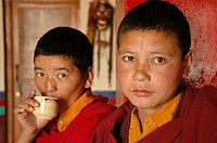 Novice monks Lama Yuru, Ladakh, India