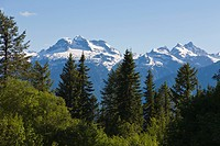 Mount Revelstoke National Park, British Columbia,
