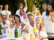People toasting their glasses, outdoors