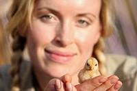 Mujer de 30 años con un pollito en sus manos, ternura