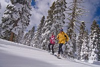 A couple running on snowshoes past snow covered pine trees at Northstar near Lake Tahoe in California