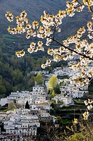 Trevelez in spring, Sierra Nevada, Andalucia, Spain, Europe