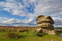 The Eagle stone on heather moorland, Baslow Edge near Curbar, Peak District National Park, Derbyshire, England, United Kingdom, Europe