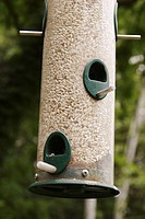 bird feeder with upper and lower openings and perches, Bloomington, IN