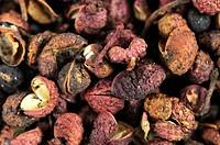 Sichuan Pepper, Zanthoxylum piperitum, simulans, bungeanum, rhetsa, acanthopodium, Szetchwan Pepper, Sheguan Pepper, Anise Pepper, Sprice Pepper, Chin...