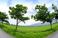 Side view of a road through green field, fish eye lens
