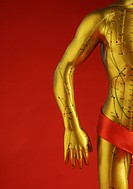 Model of human with acupuncture points