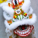 Chinese lion, close_up
