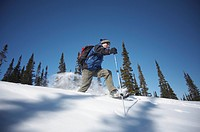 A perfect March day along the Coal Lake Trail, near Mount Sima in Whitehorse, Yukon. Here, a outdoor enthusiast trys his hand at extreme snowshoeing.