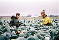 Film Fremde Haut, BRD / AUT 2005, Regie: Angelina Maccarone, Szene mit: Jasmin Tabatabai und Anneke Kim Sarnau, Drama, Halbfigur, auf Feld arbeitend, ...
