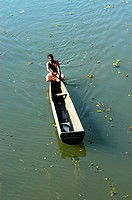 BACKWATERS OF NEDUMUDI IN ALAPPUZHA DIST, TRANSPORT DEPENDS ON COUNTRY BOATS