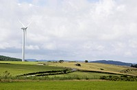 Wind turbine. Wind power is a renewable and clean source of energy for electricity production. The wind turns the blades, and this drives a turbine to...