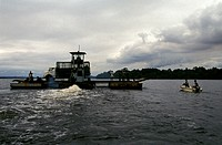Chimpanzee reintroduction. Boat taking chimpanzees from the HELP_Congo sanctuary to be released into the wild. The HELP sanctuary was founded in 1990....