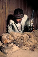 Egyptian mummy. Archaeological worker examining a mummy excavated at Luxor, Egypt. The mummy is still wrapped in its cotton shroud. Luxor is one of th...