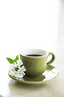 Cup of herbal tea with white flowers