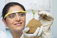 Scientist examining a plant