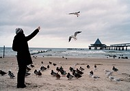 Woman feeding birds on a beach