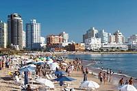 Playa Mansa beach, Punta del Este, Uruguay