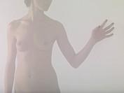 Torso of a naked woman