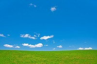 Agriculture, Botany, Cloud, Clouds, Color, Colour, Country, Countryside, Czech Republic, Daytime, Ecosystem, Ecosystems, Exterior, Field, Fields, Gras...