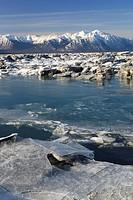 Turnagain Arm und Kenai Berge, Kenai Halbinsel, Alaska, USA