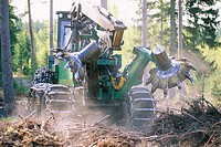 Machine cutting down trees