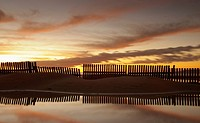 Fence reflecting in the water at sunset
