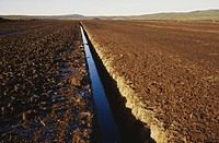 Field with channel of water
