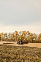 Tractor ploughing field after harvesting