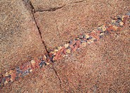 Crevice on rock close_up
