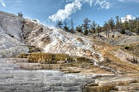 Mammoth Hot Springs, Yellowstone National Park, Montana, USA