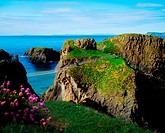 Carrick_a_Rede Rope Bridge, Carrick Island, County Antrim, Ireland