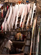 Mumbai,India,Clothes hanging over a communal laundry facility