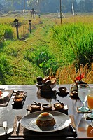 Nicely decorated table with view at the scenery, Chedi Club, GHM Hotel, Ubud, Indonesia, Asia