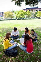 Young college students sitting on the lawn and studying together, Studying, Education