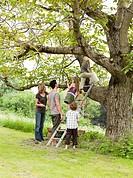 Parents With Kids Tree_Climbing