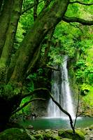 The Salto do Prego waterfall, near the village of Faial da Terra  Sao Miguel island, Azores, Portugal