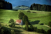 Typical scene in the Schwarzwald Black Forest, Baden-Wurttemberg, Germany, Europe