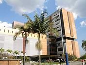 Building, Albert Einstein Hospital, Morumbi, São P