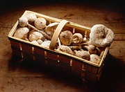 Freshly picked mushrooms in a basket