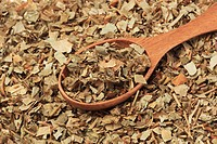 Dried hepatica with wooden spoon