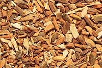 Angostura bark