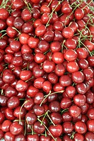 Fresh cherries on a farmer´s market in Tashkent, Uzbekistan, Central Asia