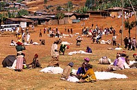 Ethiopia, the Rift valley, market day in the village of Dorze in the Guge Mountains