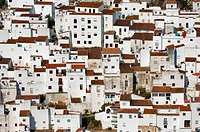 Spain, Andalusia, Costa del Sol, Casares, white village