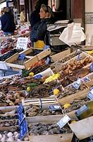 France, Calvados, Pays d´Auge, Trouville sur Mer, fish market