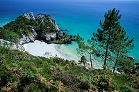 France, Finistere, Armorique regional natural park, Crozon peninsula, Cap de la Chevre, Pointe de Saint Hernot